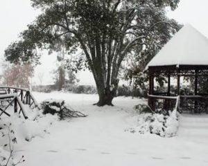 kzn snow